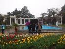 Экскурсия в Никитский ботанический сад_3